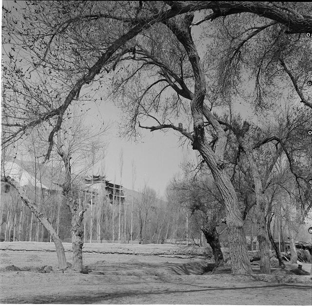莫高窟九层楼前-外景-1956年