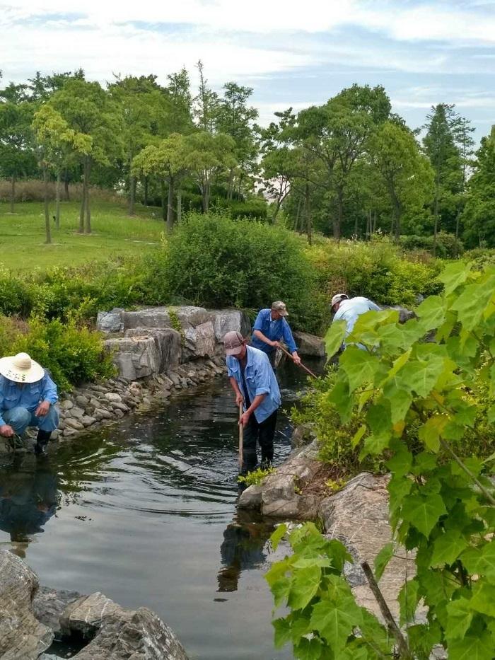 海燕山水系清理