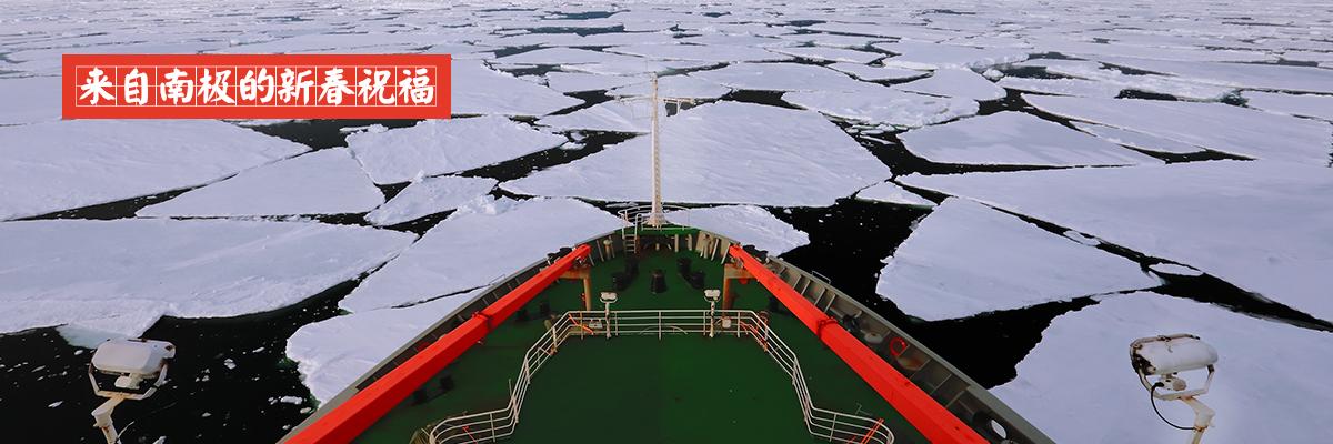来自南极的新年祝福