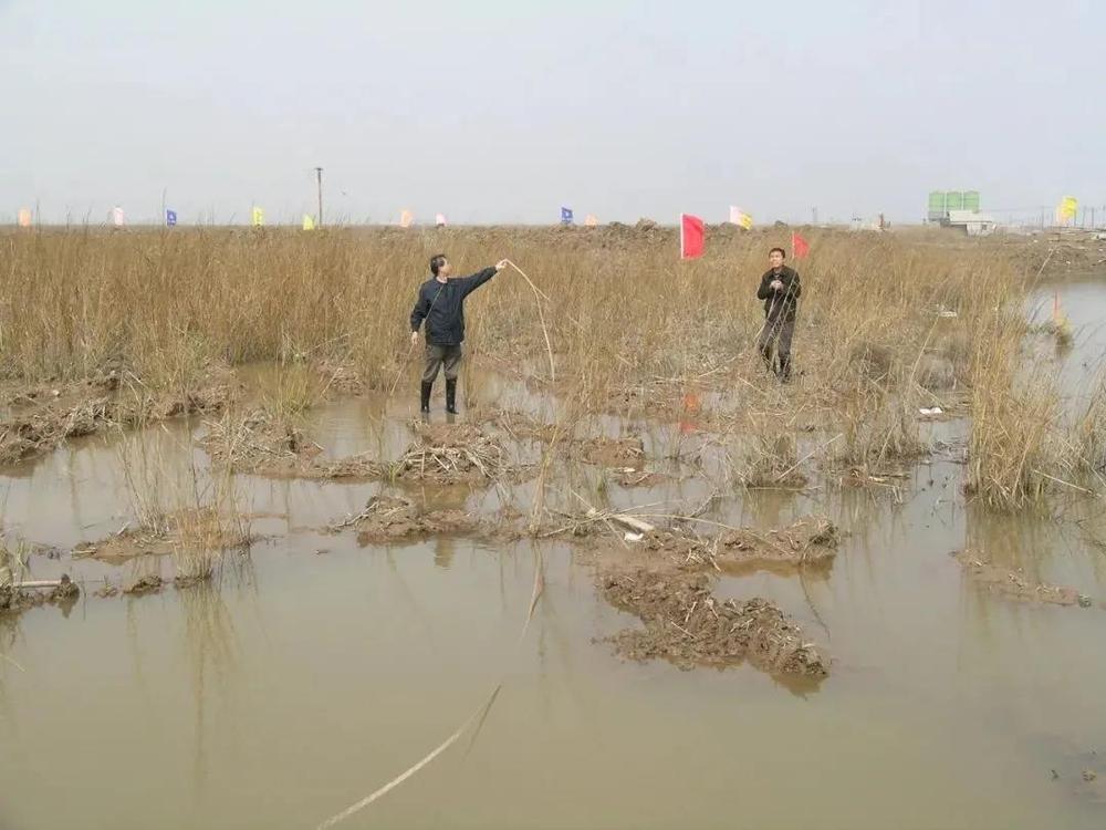 2005年2月海大人在现场规划苗圃